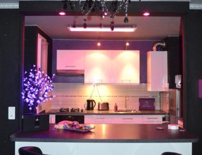Purple Lovt (3)